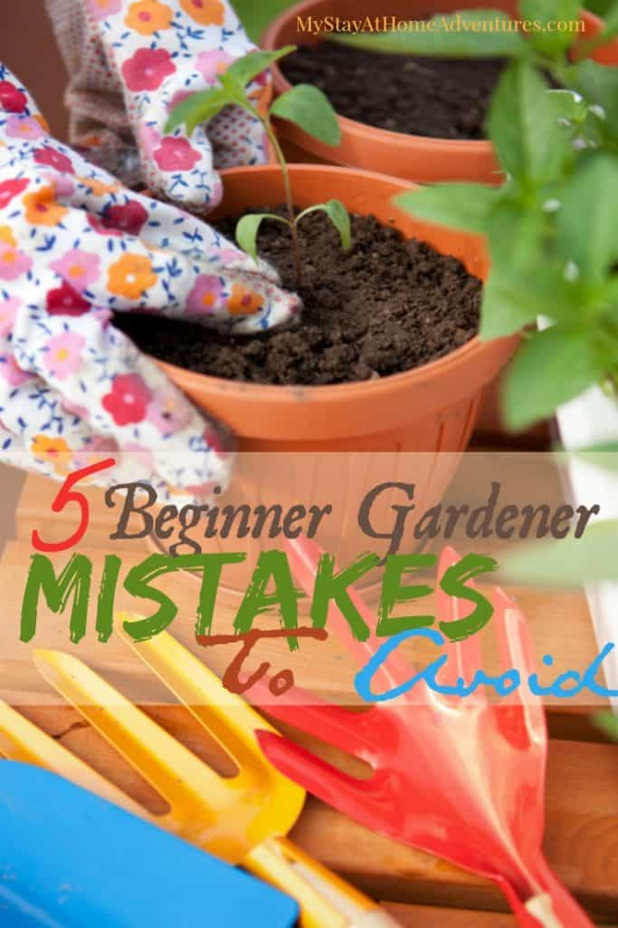 5 Beginner Gardener Mistakes To Avoid - Before you start your garden learn 5 beginner gardener mistakes to avoid this gardening season. #garden #gardening