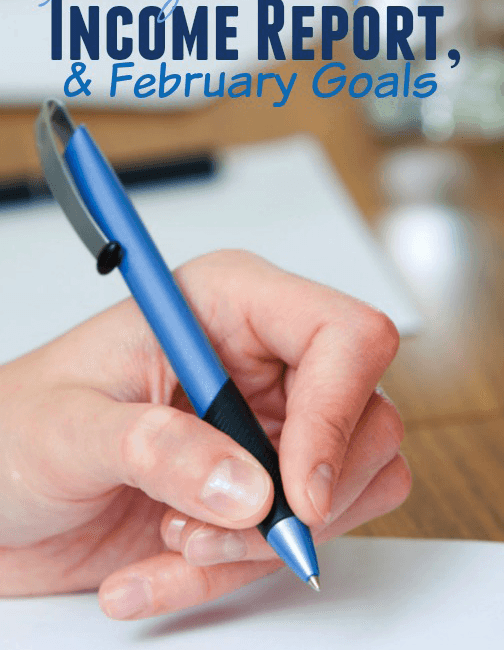 January Goals Updates, February Goals + Online Income Report