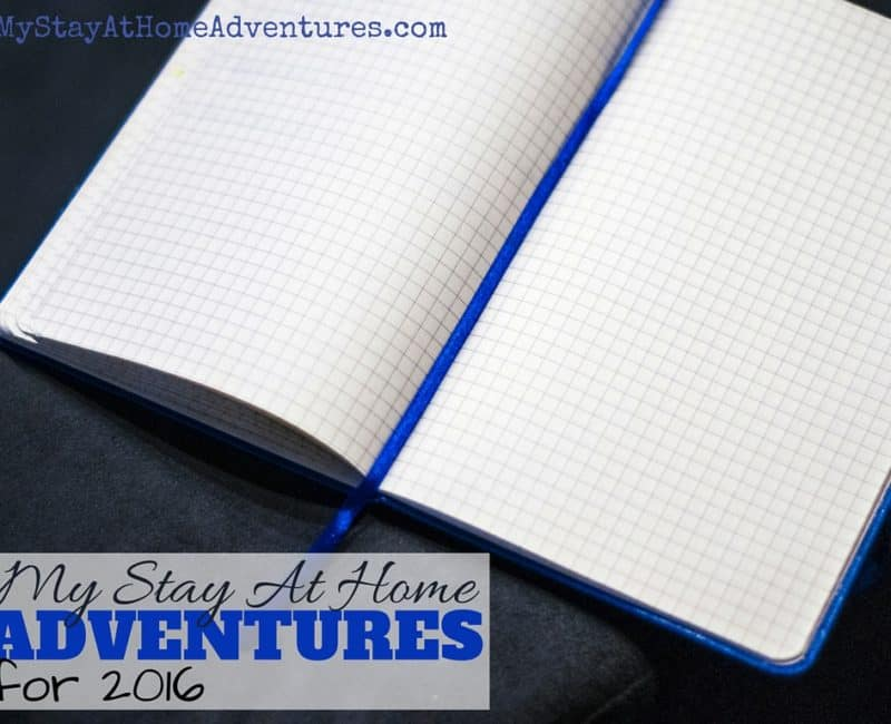 My Stay At Home Adventures for 2016