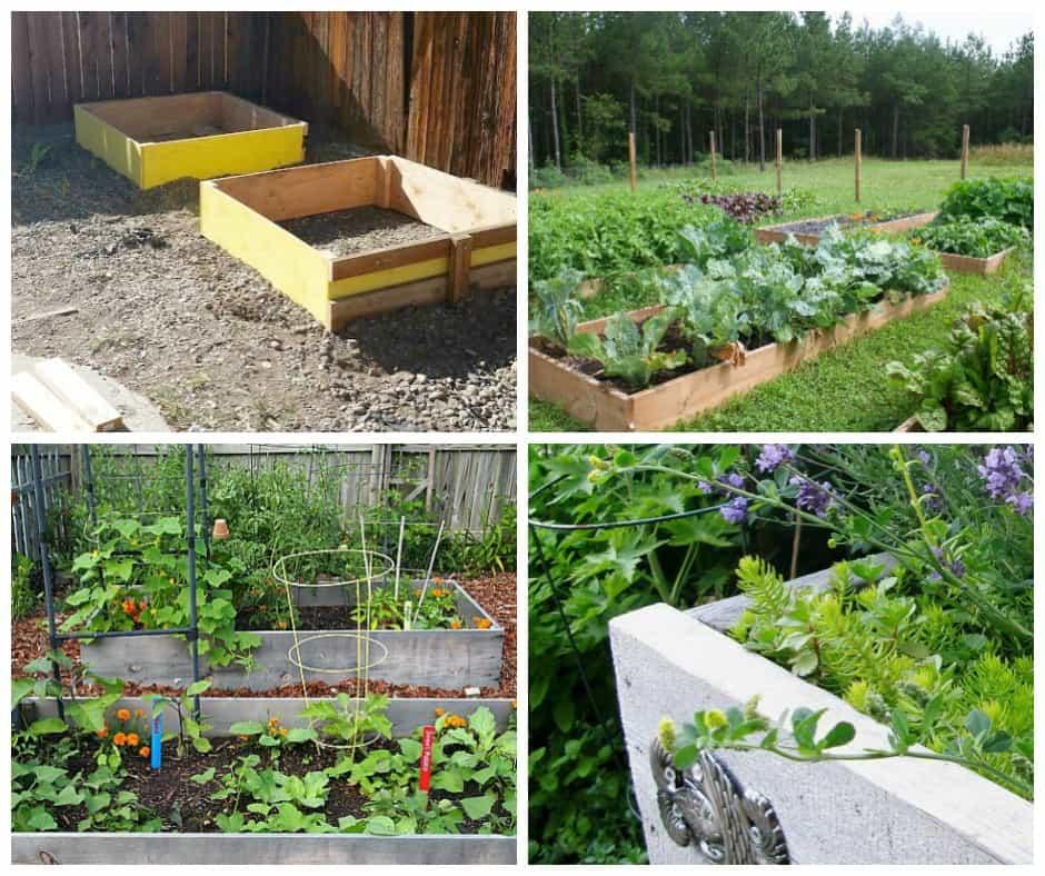 raised garden bed ideas