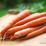 How To Grow Carrot Indoors