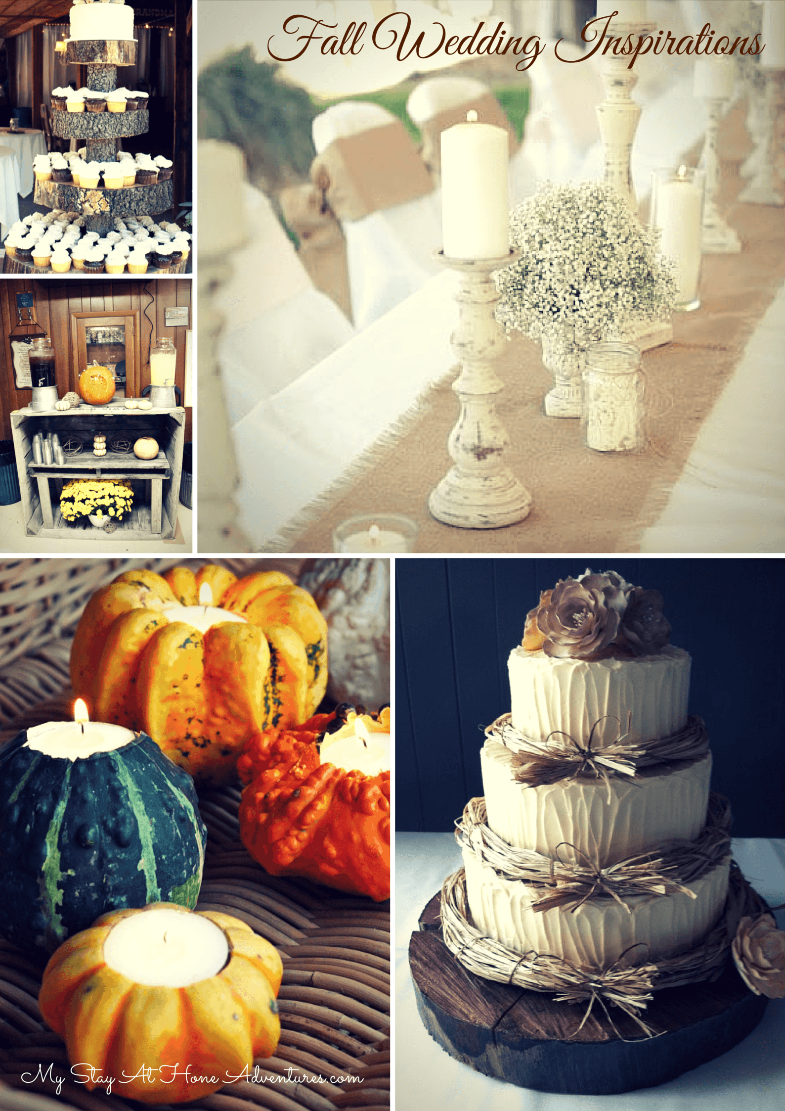 Fall Wedding Inspirations - Looking for the latest Fall Wedding Inspirations? Check out these hot, trendy fall wedding decorations and to save money creating them.