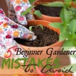 5 First Time Gardener Mistakes To Avoid This Season