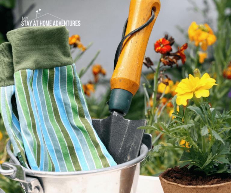 5 Ways To Not Fail At Gardening This Season