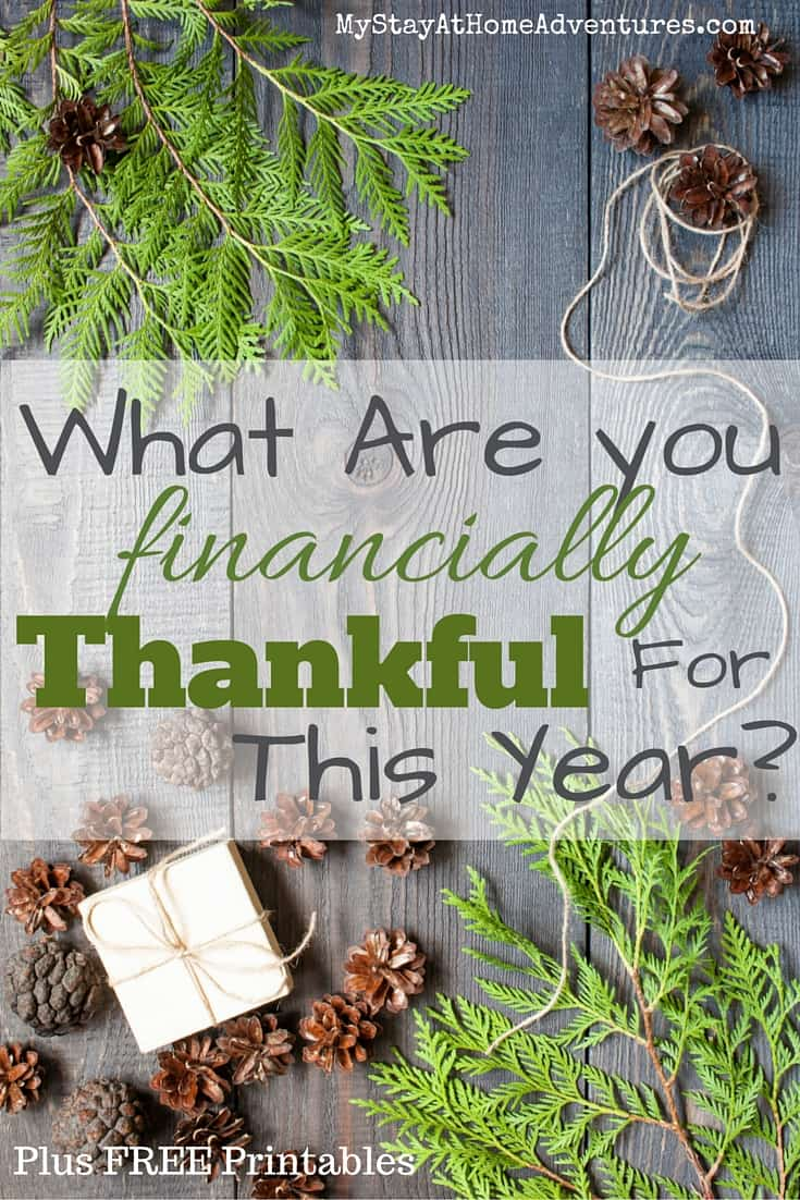 What Are you financially Thankful For This Year? I have to be honest and said that the road to debt freedom has taught me to be thankful of so many things including my finances.