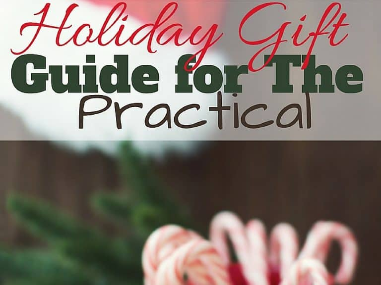 Holiday Gift Guide for The Practical for 2018