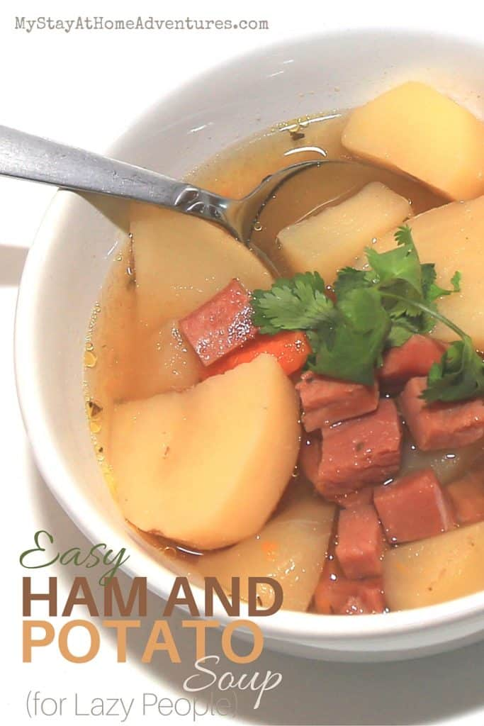 Easy Ham & Potato Soup