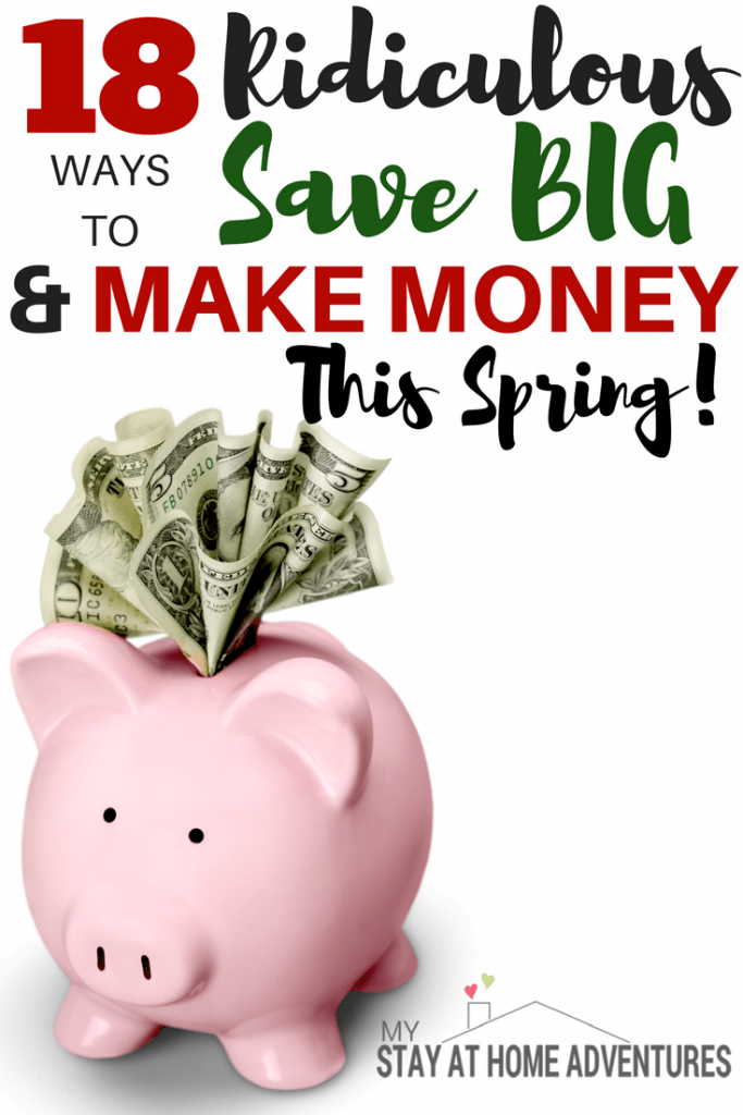Spring is here and this season you will have a financially successful spring! How you may ask. With this 18 ridiculous ways that will help you make money and save money this season. The good news is that the entire family can do these money tricks!