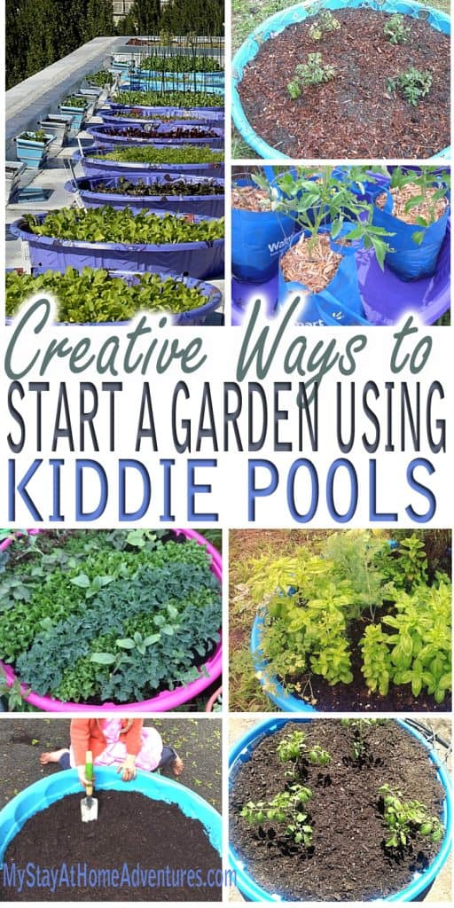 See the reasons and ideas as to why we will expand our garden using kiddie pools this year. The ways to use kiddie pools to grow your garden are clever.