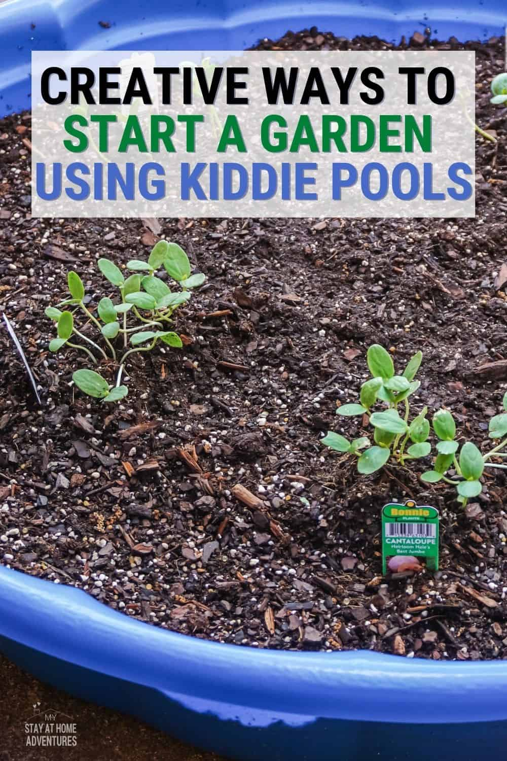 Are you looking for an incredibly inexpensive way to garden? You can build your own kiddie pool garden for as little as $10! via @mystayathome