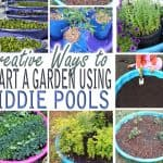 Creative Ways to Start a Garden Using Kiddie Pools