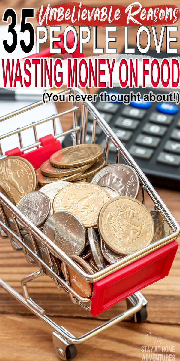 People love wasting money on food. We do! Here are 35 reasons why we seem to love wasting money on food and the reasons will shock you.