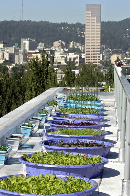 Rooftop garden at Rocket restaurant building. Garden created by Marc Boucher - Colbert (CQ) and Erin Altz (CQ) who are mixing soil for the pots. Photo by Marv Bondarowicz/The Oregonian