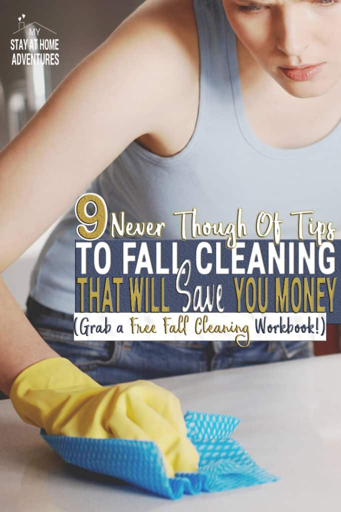 Learn 9 reasons you will love spring cleaning and save money at the same time. Grab the free workbook and start cleaning and saving this season.