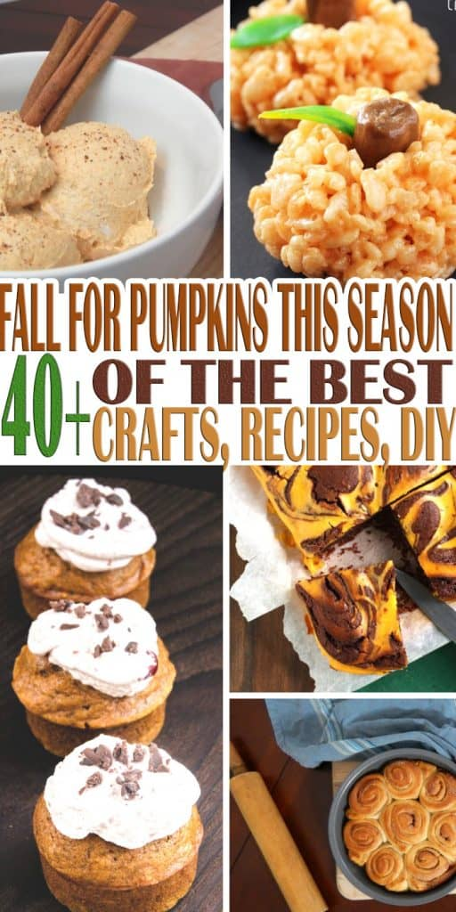 Don't we love Fall? Of course we do! This is why we have everything you can imagine about pumpkins! Fall For Pumpkins This Season with everything pumpkin!