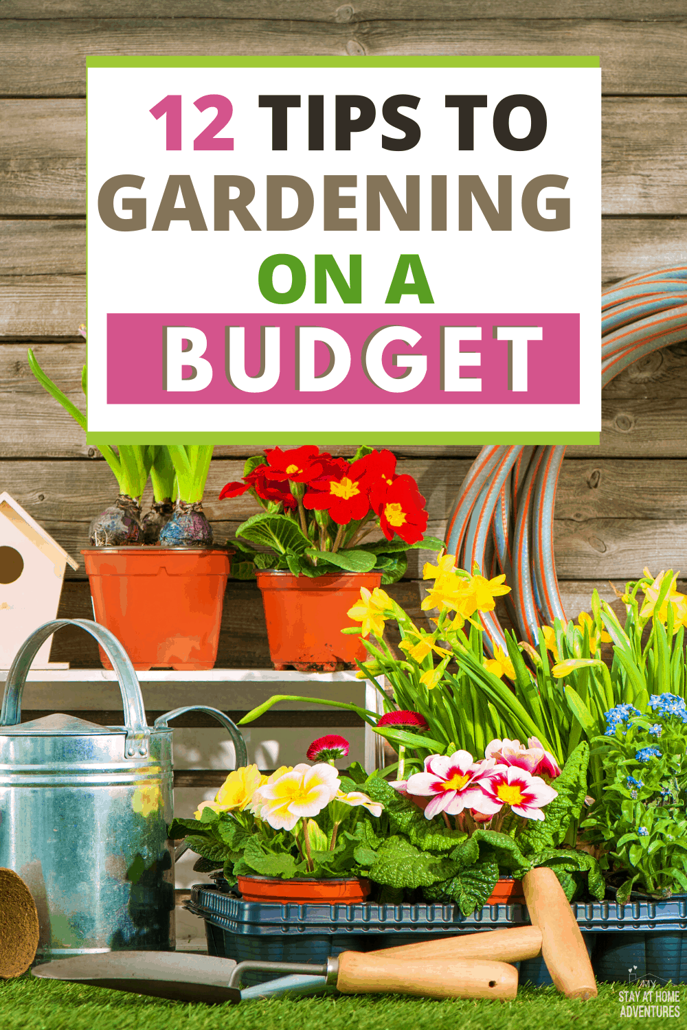 Learn how you can start gardening on a budget with these twelve tips and start gardening and saving money starting today! #garden #gardeningtips  via @mystayathome