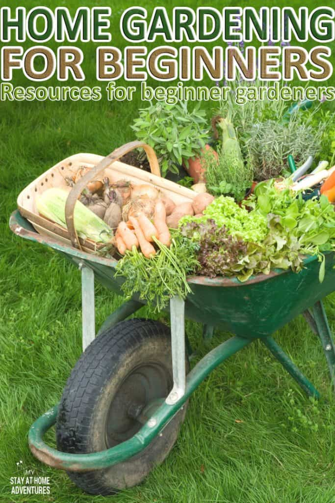 Thinking of starting a home garden? Check out these home gardening for beginners resources to help you start gardening this season.