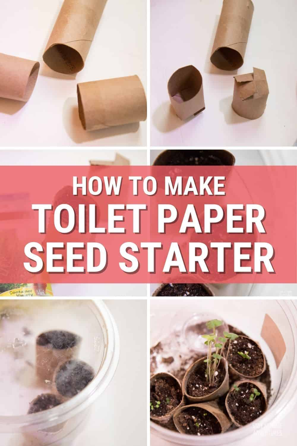 This toilet paper seed starter tutorial is all you need to seed starting indoor this season. Learn all you need to know and start growing your garden today. #gardening #seeding #toiletpaperseedstarter via @mystayathome