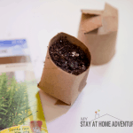 How to Create Toilet Paper Seed Starter