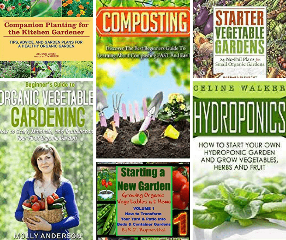 Gardening for Beginners: How Plants Grow (Step by Step Gardening for Beginners Book 1)