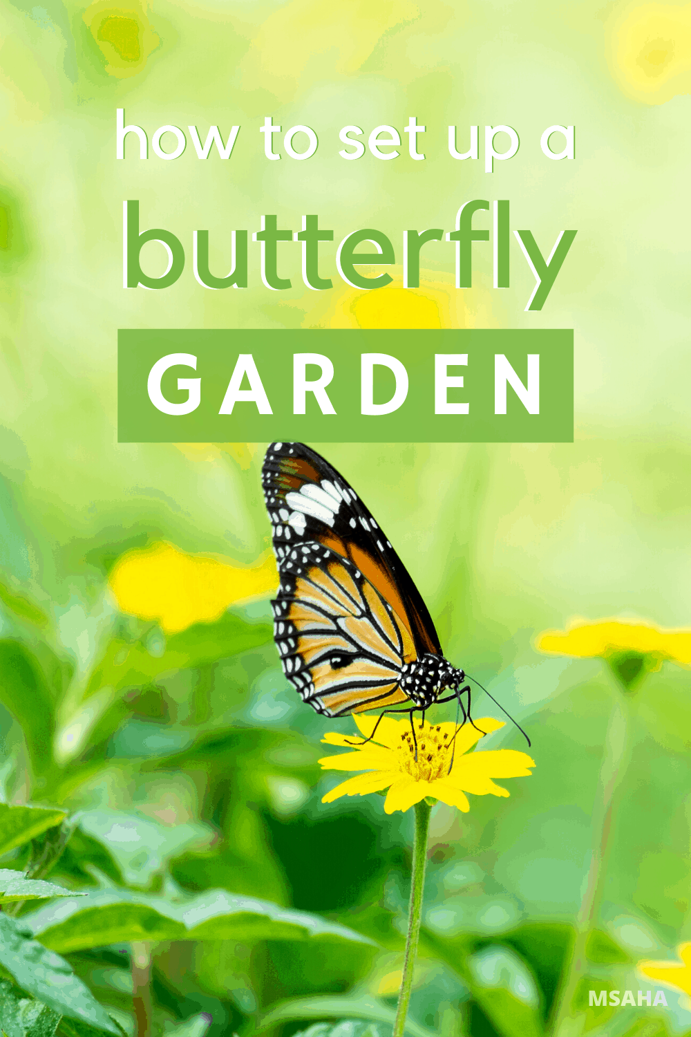 Springtime is here, so let's learn how to set up a butterfly or hummingbird garden the right way with these helpful tips to help you this season. #garden #butterfly #hummingbird via @mystayathome