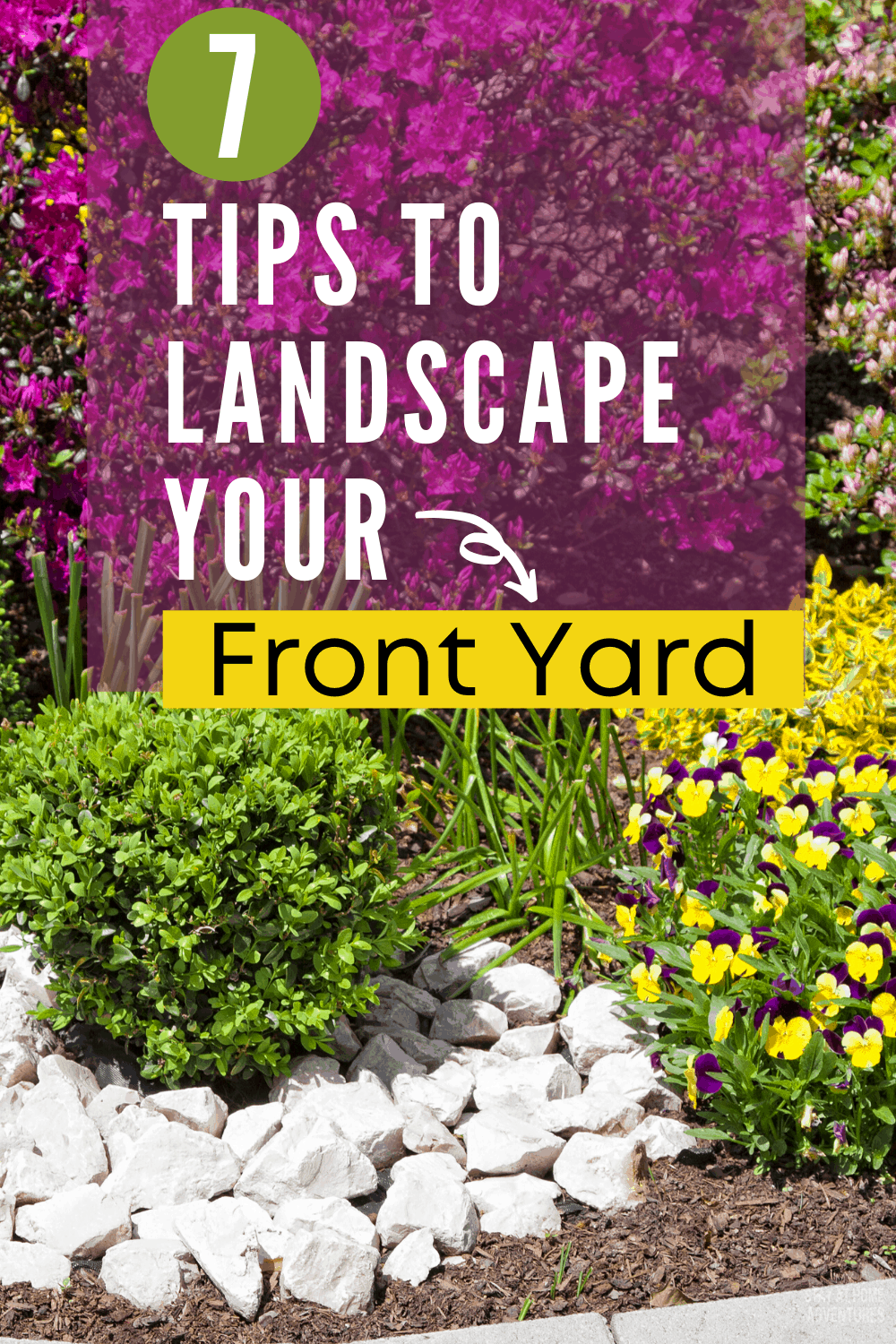 You are trying to find out how to landscape your front yard without breaking the bank. Here are 7 helpful tips to get your landscaping project started. #landscaping #Landscape #howto #frontyard via @mystayathome