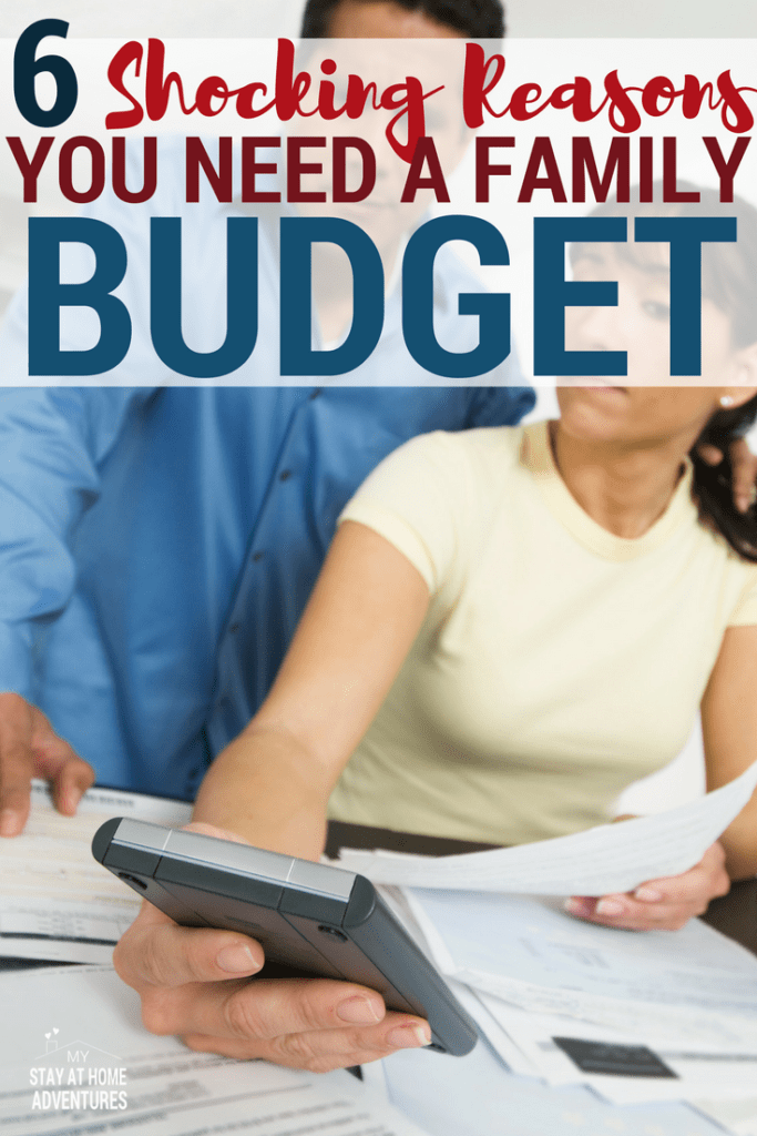 You want the best for your family and you need a family budget. Don't believe me read these 6 incredible reasons why you need a family budget today!