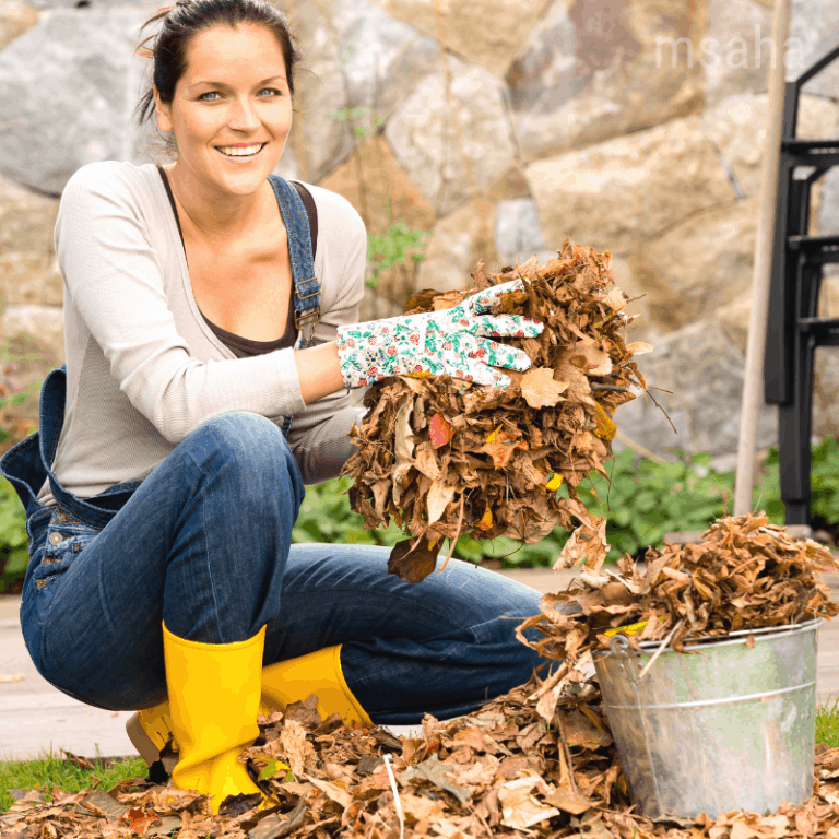 9 Reasons a Good Fall Cleaning Can Save You Money
