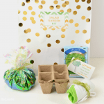 Mother's Day DIY Gift: Mother's Day Salad Garden Kit