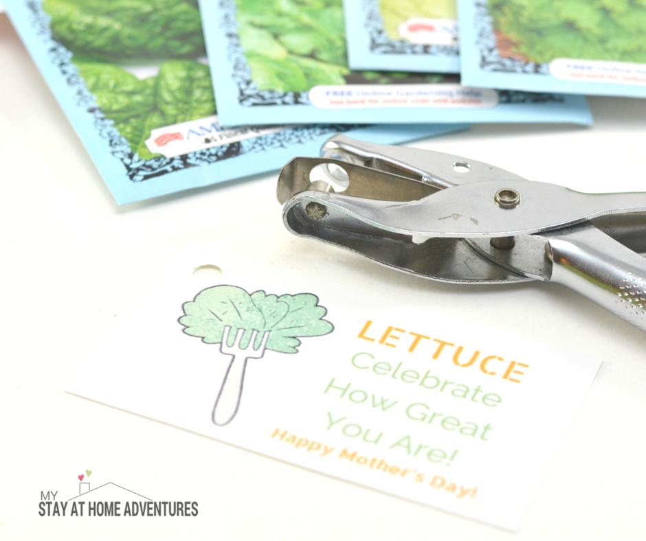 Mother's Day DIY Gift: Mother's Day Salad Garden Kit - Garden gift for moms