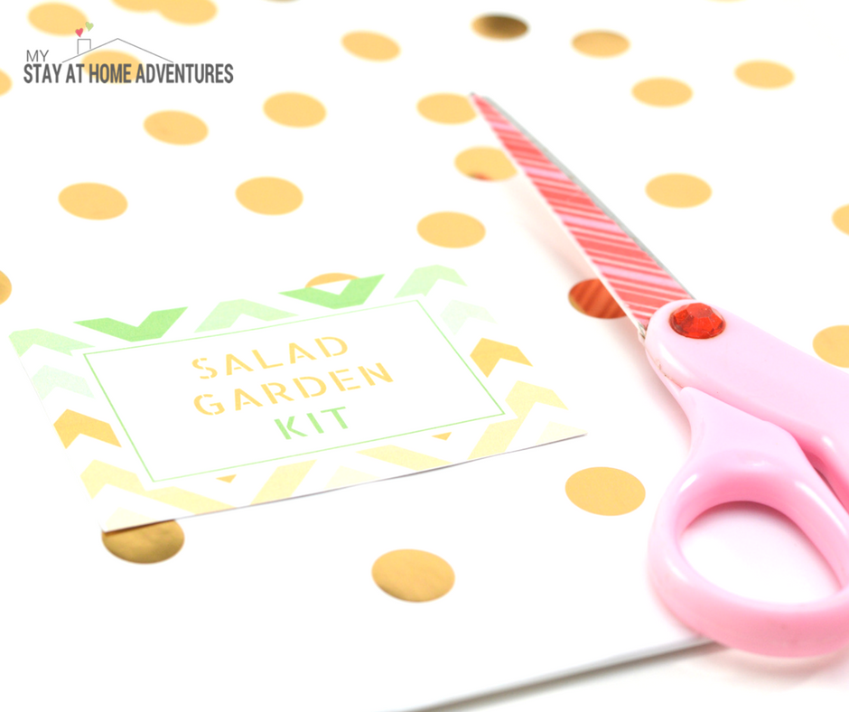 Mother's Day DIY Gift: Mother's Day Salad Garden Kit - Salad Garden Kit Card Free PDF