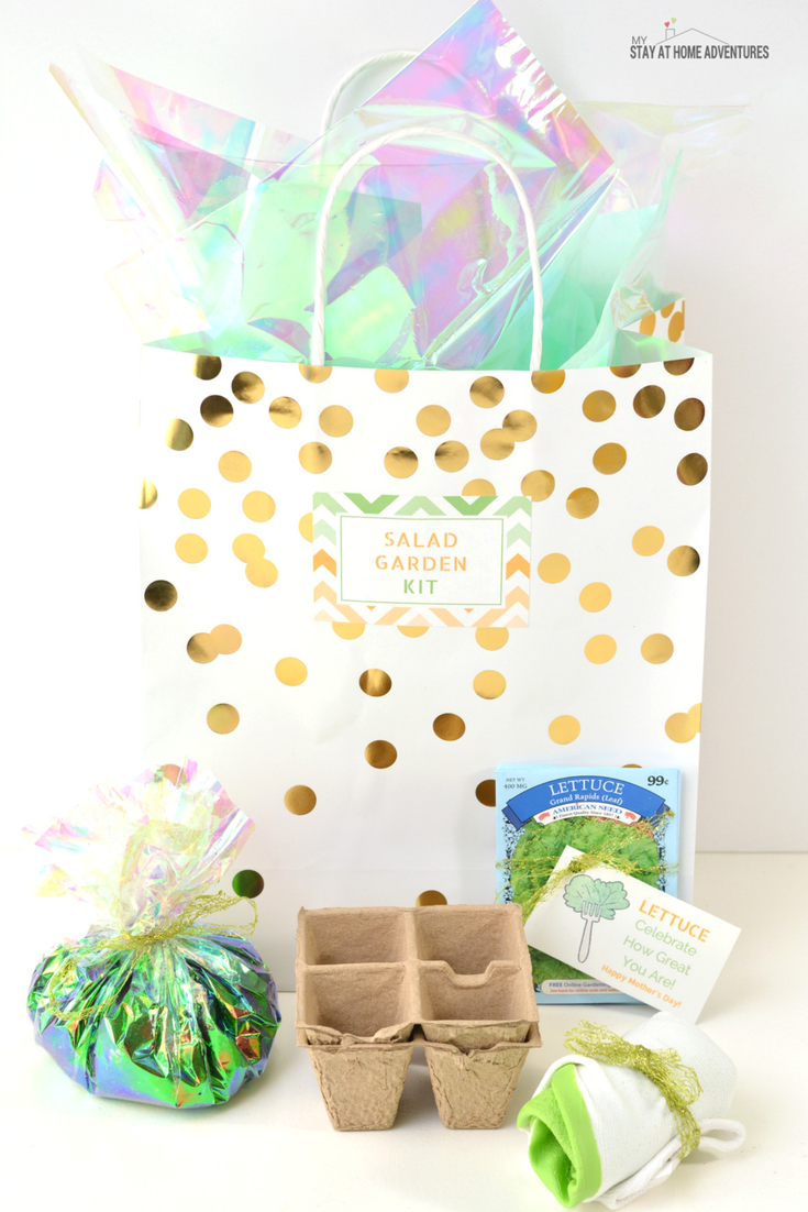Looking for a cute and affordable Mother's Day DIY gift? Check out this super cute Mother's Day Salad Garden Kit for the mom who loves gardening and of course salad! Comes with free printable cards and all you need can be bought at your local dollar store!
