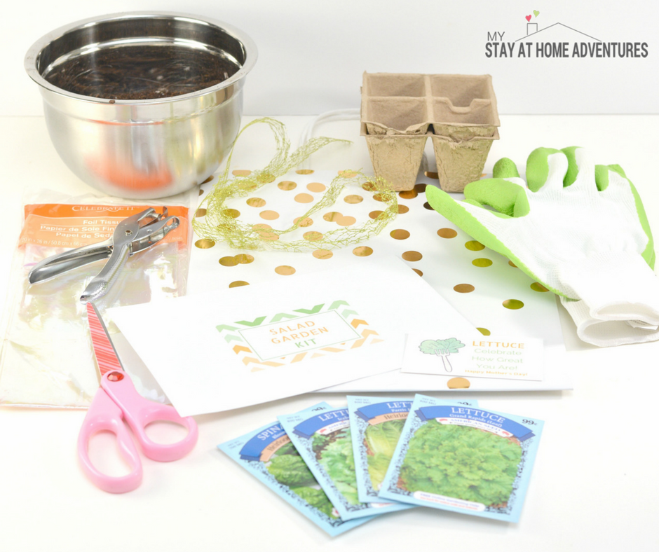 Mother's Day DIY Gift: Mother's Day Salad Garden Kit -Mother's Day gift for gardeners