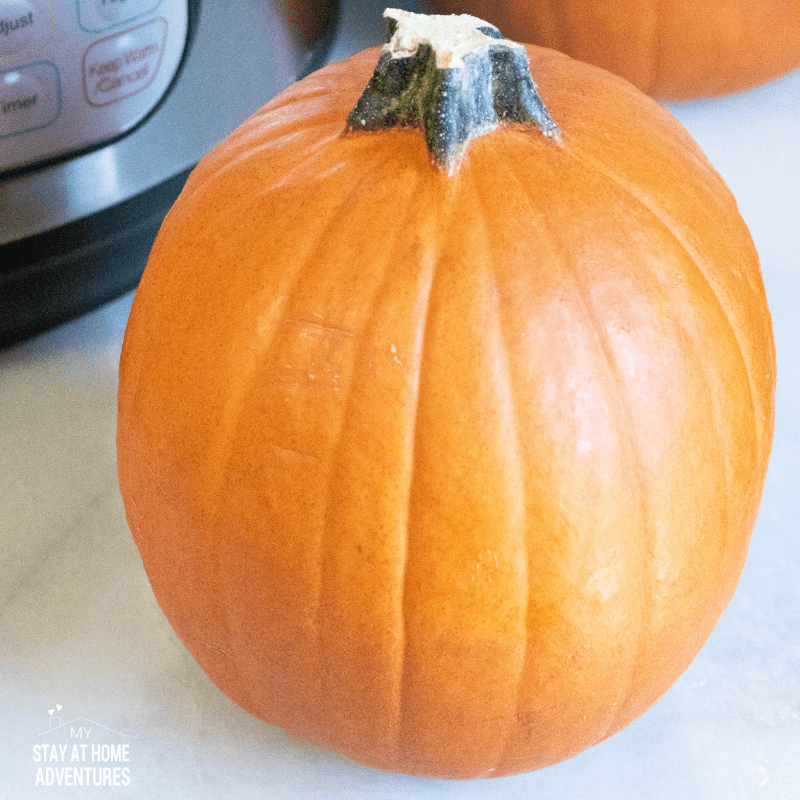 Instant Pot Pumpkin Puree using a pie pumpkin.