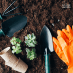 Cheap Ways to Improve Your Garden Soil