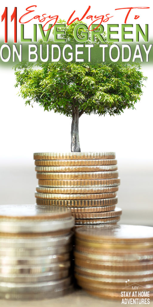 Learn 11 realistic ways to live green on a budget today that do work. These tips will help you reduce your spending and help keep our environment green.