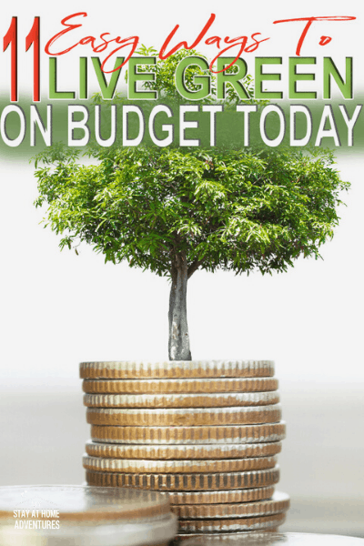 Learn 11 realistic ways to live green on a budget today that do work. These tips will help you reduce your spending and help keep our environment green. via @mystayathome