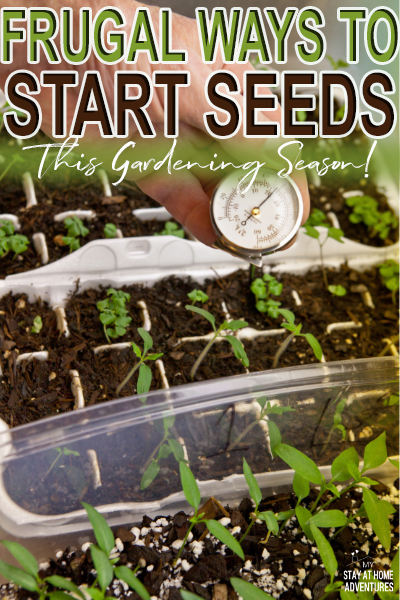 Are you a beginner gardener? Learn frugal ways to start your seeds this gardening season with items you already have in your home.
