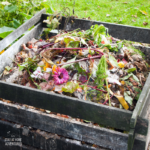 Composting Tips (3 Basic Tips For Beginners)