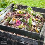 Composting Tips (3 Basic Tips For Beginners)