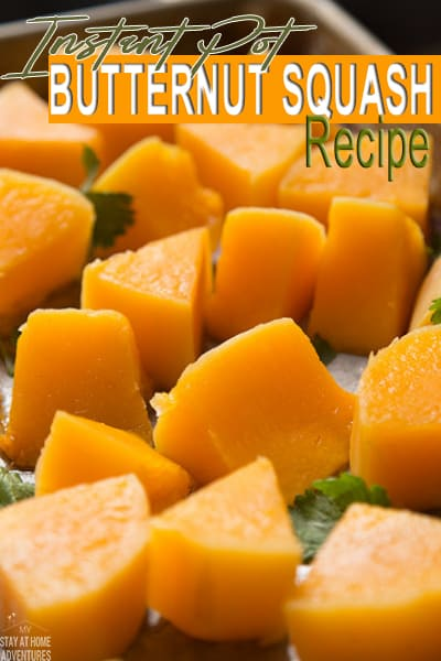 Learn how to make Instant Pot Butternut Squash plus try these four butternut squash recipes using your Instant that are so flavorful you are going to love!