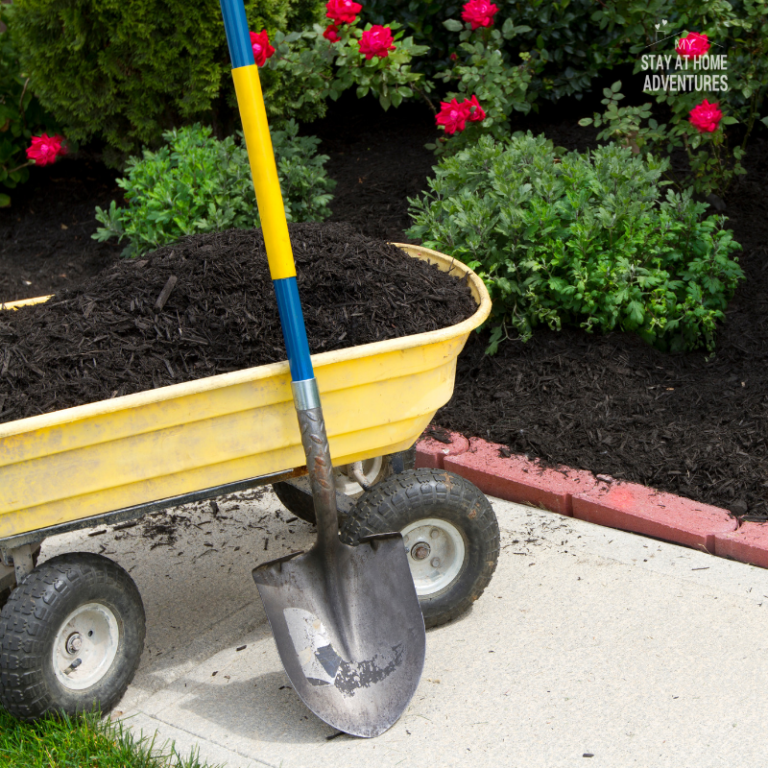 10 Ways to Spring Clean Your Outdoor Space