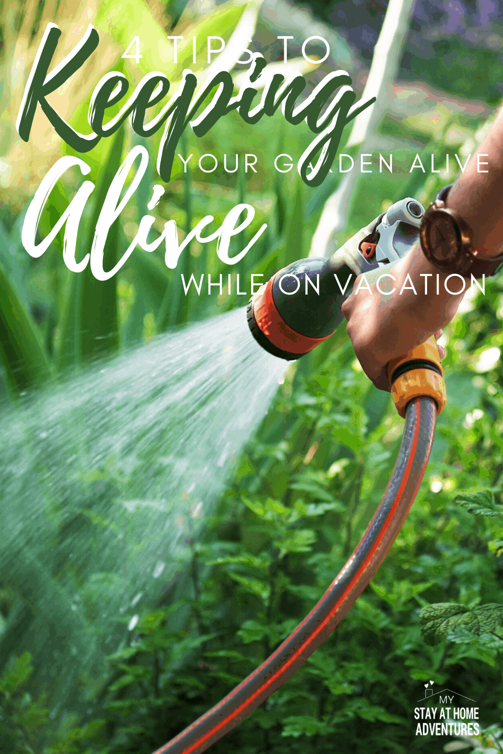 Are you worried about your garden this summer season? Learn four tips to keeping your garden alive while on vacation you might be surprised to know. #gardening #homegarden #gardeningtips via @mystayathome