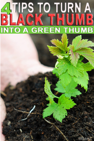 Thinking about starting a garden, but don't have a green thumb? Learn four tips to turn black thumb green this gardening season.