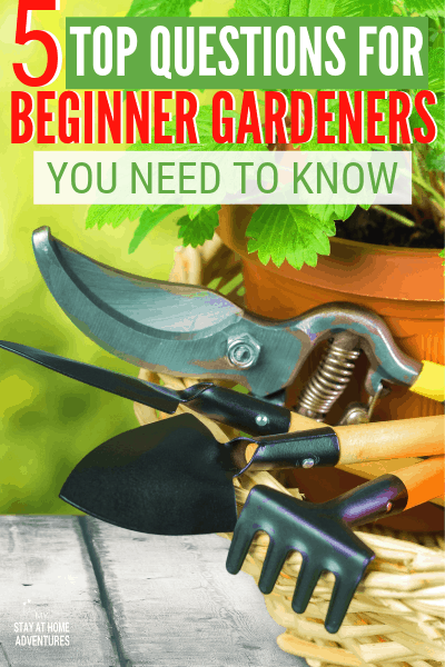 Learn what the five top questions for beginner gardeners are and why these questions are so crucial to start a garden. #gardentips #gardening #beginnergardening #garden #organicgarden via @mystayathome