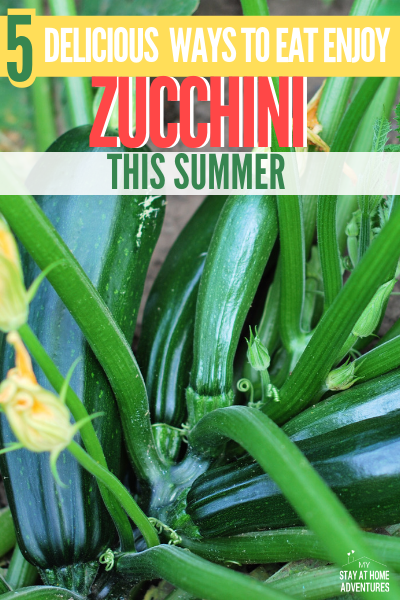 Growing zucchini this summer? Want to enjoy fresh zucchini? Learn five delicious ways to enjoy zucchini this summer and yes, a video included. via @mystayathome