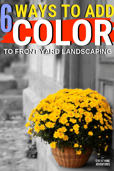 Learn how to add color to front yard landscaping that is affordable and realistic. These six landscaping tips will help you out all year long.