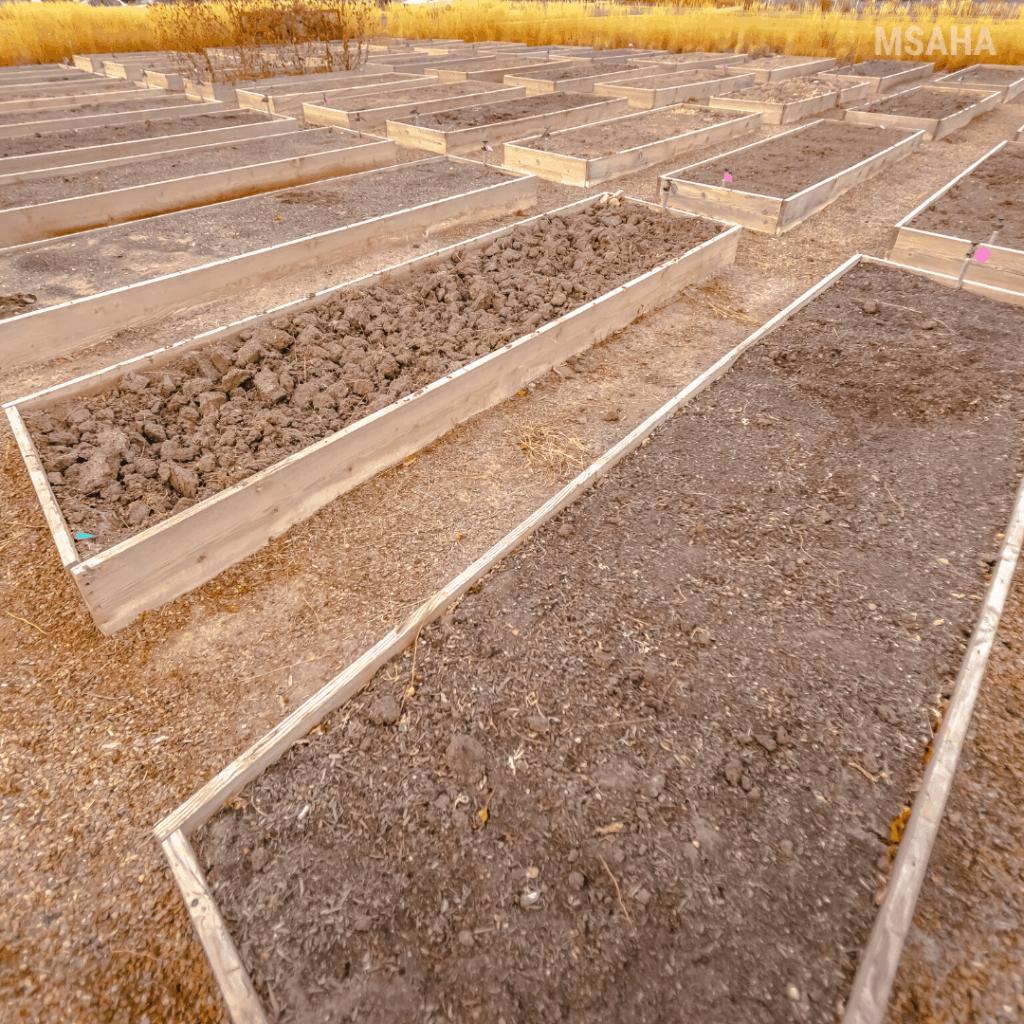 How To Build Raised Vegetable Garden Beds For Beginner