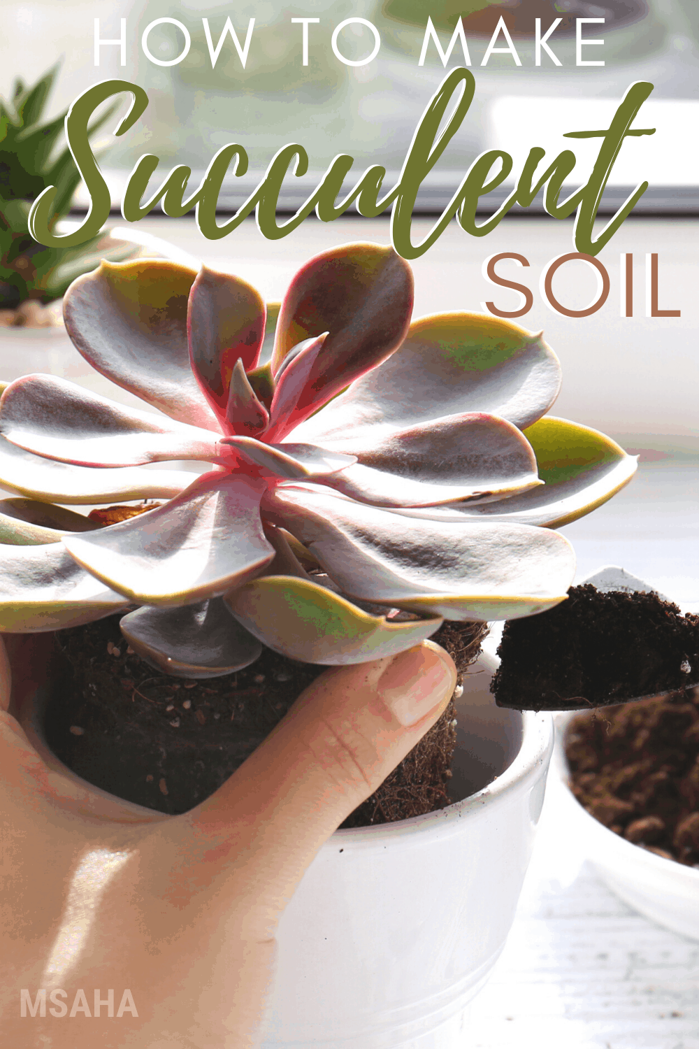 You are going to learn about succulent soil. Why the type of soil you use for your succulent is essential and how to make your own succulent soil. #Succulent #gardening #soil via @mystayathome