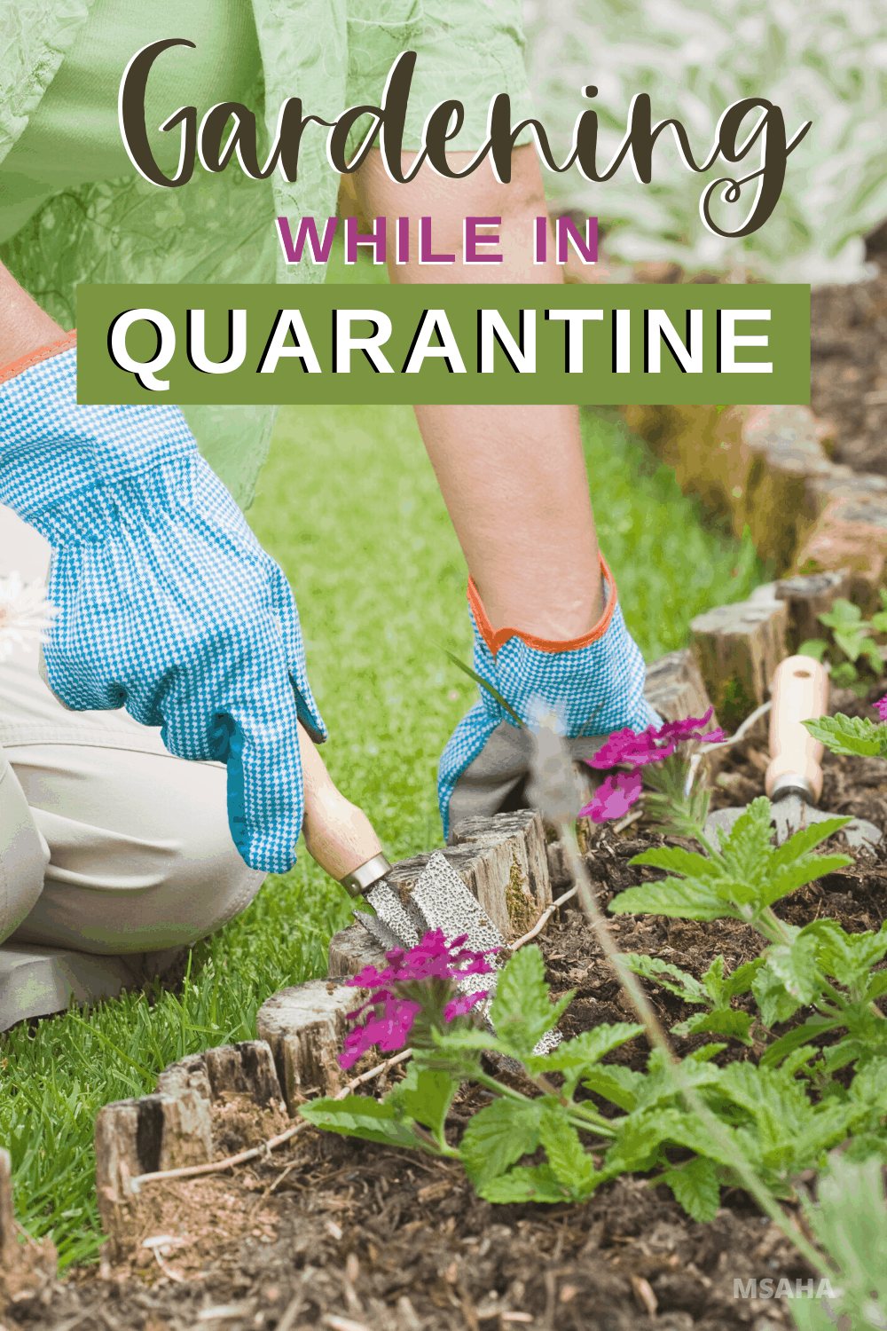 Gardening is not canceled. Gardening and quarantine go hand in hand and the best time to start gardening if you have been thinking about it. via @mystayathome